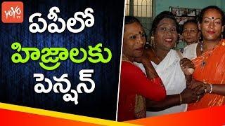 ఏపీలో హిజ్రాలకు పెన్షన్ | Chandrababu Naidu Govt Pension to Hijras | Ap Cabinet Meeting