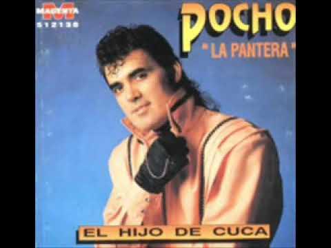 POCHO LA PANTERA   EL HIJO DE CUCA