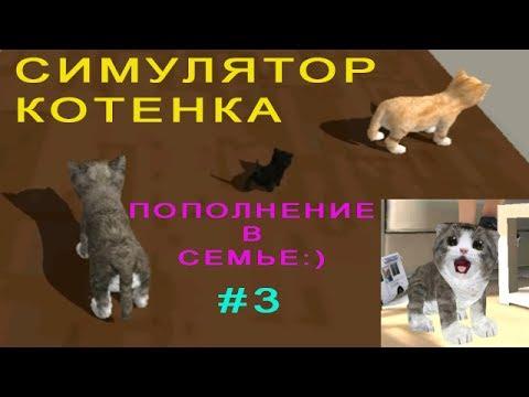 Симулятор МАЛЕНЬКОГО КОТЕНКА #3 Пополнение в Семье! Детское видео Игровой мультик Let's play