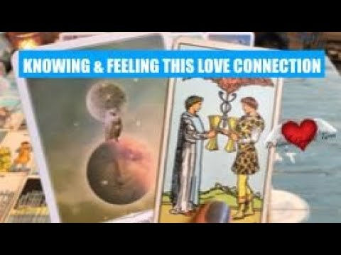 Daily Tarot Reading Energy Of Today April 9 | Going The Distance Anyway You Can For This Connection
