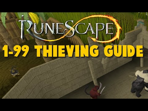 Runescape Ultimate 1-99 Guide: Thieving Complete Guide 1-99 2014 – iAm Naveed