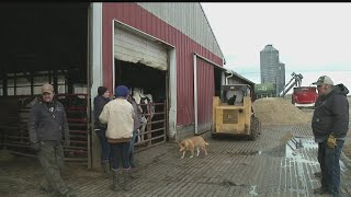 Dean Foods ending business with local dairy farmers