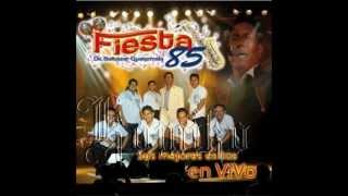 FIESTA 85 MIX VOL II