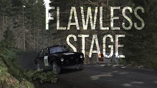 DiRT Rally | Ford Escort Mk II | Flawless Stage