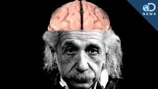 How Einstein's Brain Is Different Than Yours