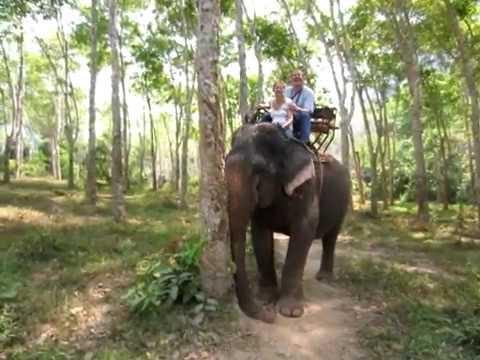 2015 Elefant Ríding