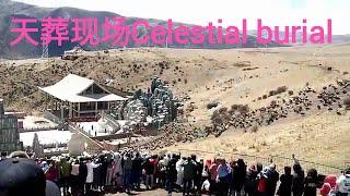 中国藏族地区 天葬现场 Celestial burial site in Tibet, China