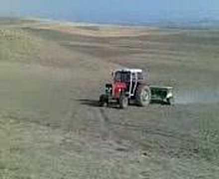Alaattin Barindik-Çiftlik Koyu-Ekim
