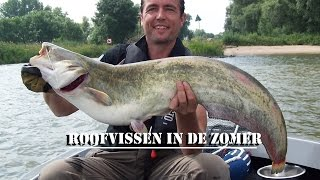 Roofvissen in de zomer 2016 - Predator fishing in the summer