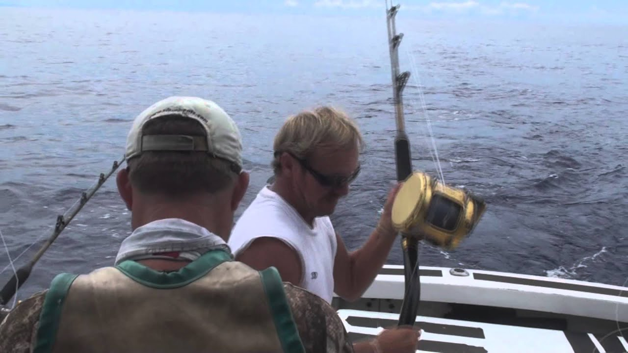 Big game fishing on the linda sue iii 3 blues in 2 days for Fishing license for disabled person