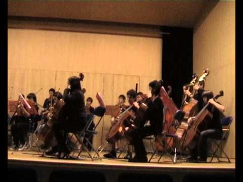 Orquestra Intermèdia: Una història de la música occidental