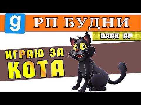 РП БУДНИ | Garry's Mod DarkRP #24 | ИГРАЮ ЗА КОТА (Я КОТИК) [Гаррис Мод ДаркРП | GMod Dark RP]