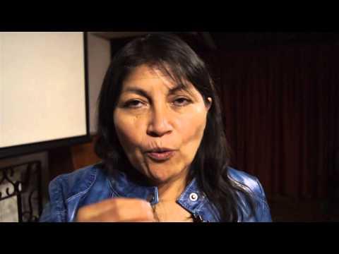 academica lengua mapuche