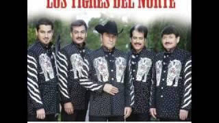 Vídeo 220 de Los Tigres del Norte