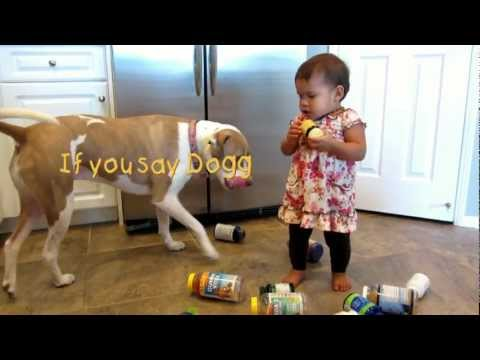 Vicious Pit Bull attacks baby girl