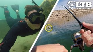 Lucky Tackle Box Fishing Trip! - Trailer (Sponsored by LTB)