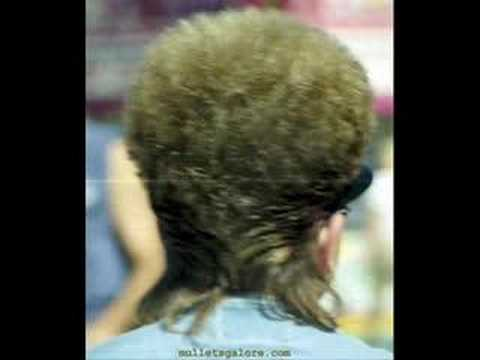 Wesley Willis - Cut The Mullet !!!