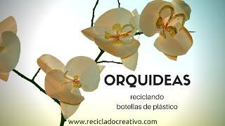 Cómo hacer orquídeas con botellas de plástico - How to make orchids out of recycled plastic bottles