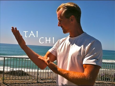 Yang Style Tai Chi Chuan - Amazing! video