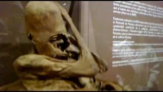 Exposición de momia con cráneo deformado de la cultura Paracas