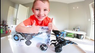 A ROBOT DINOSAUR TOY!? - Miposaur Play Time!