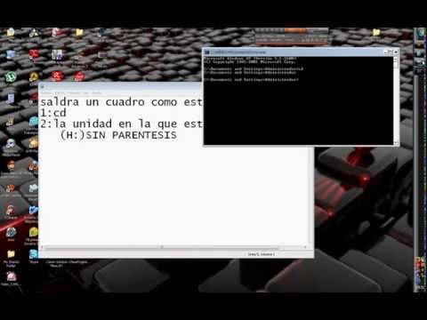 como recuperar archivos ocultos por los virus 100% rápido y seguro
