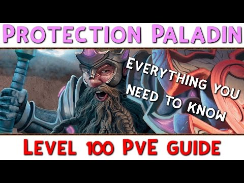 Level 100 Protection Paladin PvE Guide