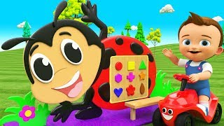 Colors & Shapes for Children to Learn with Little Baby Fun Ladybug Wooden ToySet 3D Shapes for Kids