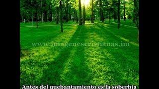 BIBLIA HABLADA(SAN LUCAS)     ,,,,,,COMPLETO Y CASTELLANO, VERSION REINA VALERA