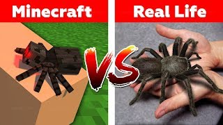 MINECRAFT SPIDER IN REAL LIFE! Minecraft vs Real Life animation