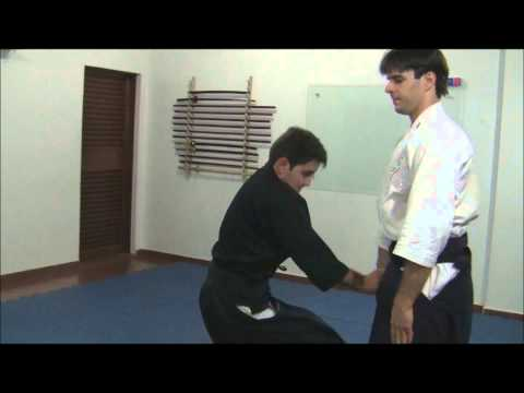 Ogawa Ryu - Aikijujutsu Gohon Me - April Training Image 1