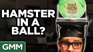 What's On My Head? Challenge (Ft. Mayim Bialik) by : Good Mythical Morning
