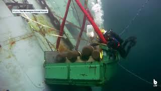 Removing torpedoes from the frigate Helge Ingstad | Blueye Underwater Drone
