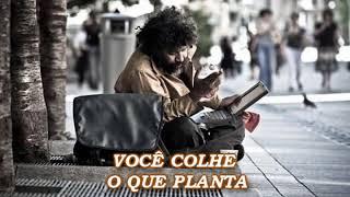 VOCÊ COLHE O QUE PLANTA (UMA LINDA REFLEXÃO DE VIDA) veja!!!