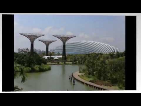 Gardens by the Bay | Visit Singapore | Singapore Travel | Travel Singapore | Singapore Tourism