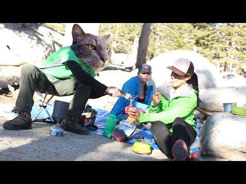 MSR Micro Rocket Stove VS MSR Whisperlite Stove Review   Backpacking Adventures