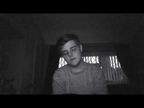 "My Attempt of ""The Nights"" by Avicii"