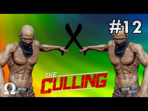 DOUBLE TEAM, THE DREAM! | The Culling #12 w/Delirious (Battle Royale Gameplay)