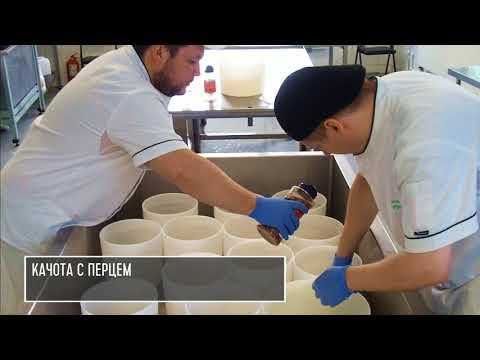 Сыроварня 4 сыра. Работа сырного цеха.