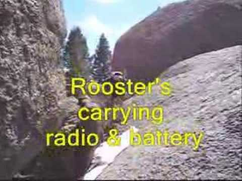FT817/Buddistick/Goats on the Rocks