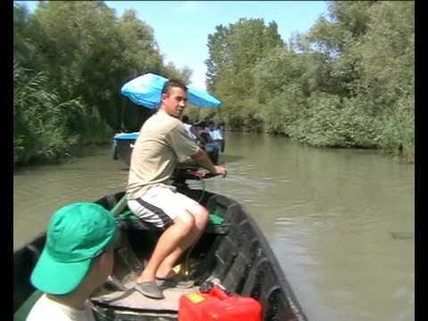 рыбалка видео на дунае