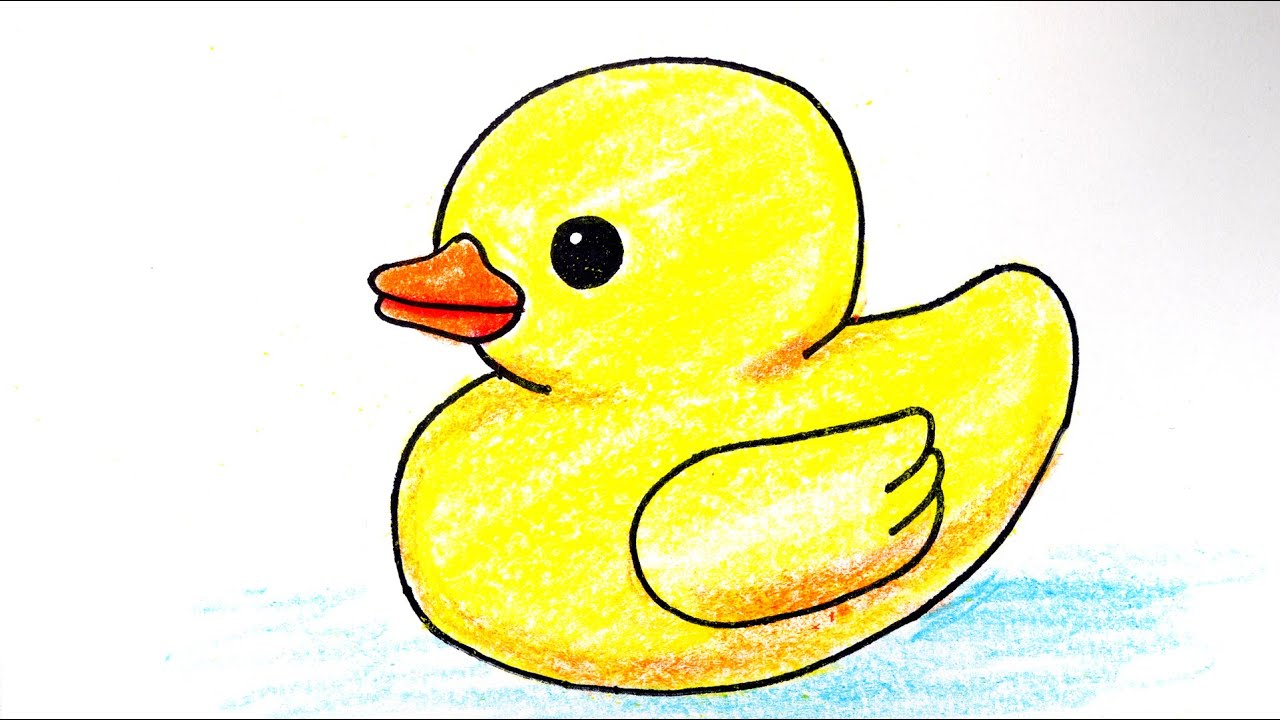 Cute Ducks to Draw images