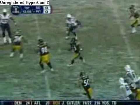 Troy Polamalu Highlights Video