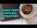 Babam İşyerinde Boruda Sıkışan Kediyi Bakın Nasıl Kurtarmış.Kedi Kurtarma Operasyonu