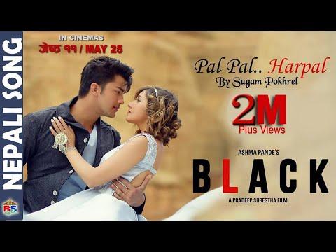 PAL PAL HARPAL   BLACK   Nepali Movie Song-2018 by Sugam Pokharel ft. Aakash Shrestha Aanchal Sharma