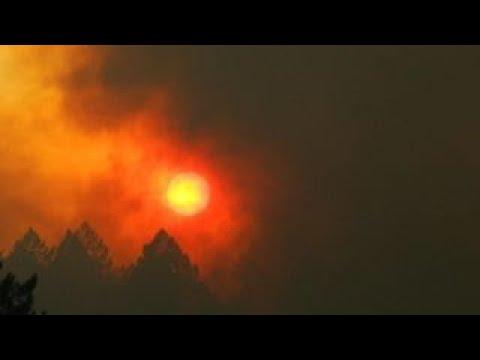 California wine grower waiting to assess wildfire damage