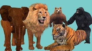 Animal Sounds Video For Kids    Wild Animals Nursery Rhymes vesves Soungs For Babies