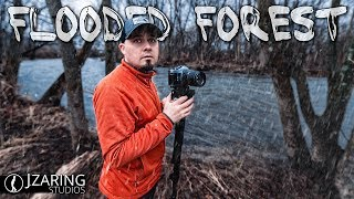 Flooded Forest: Long Exposure Landscape Photography