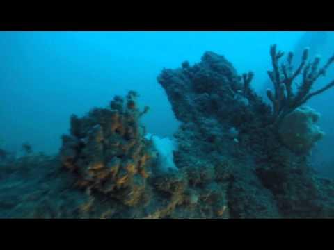 The 'Brunette' Ship Wreck Dive