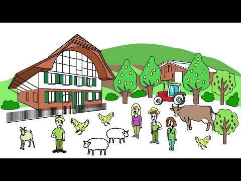 Landwirtschaft: Strukturvielfalt sichert unsere Ernährung